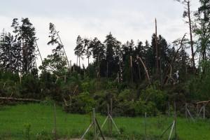 Sturm (2)